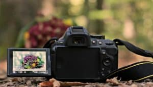 What is a DSLR? | Peerspace
