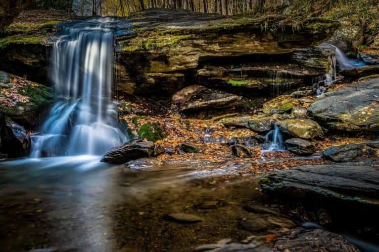 The 5 Best Landscape Photographers in Charlotte   Peerspace