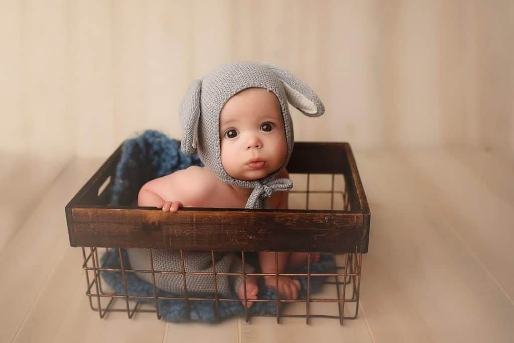 best raleigh family photographers