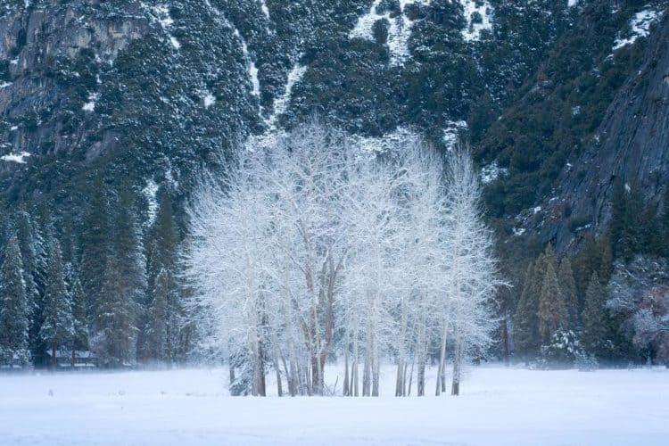 The 6 Best Landscape Photographers in Sacramento   Peerspace