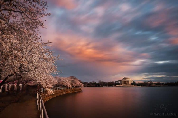 The 7 Best Landscape Photographers in Washington, DC | Peerspace
