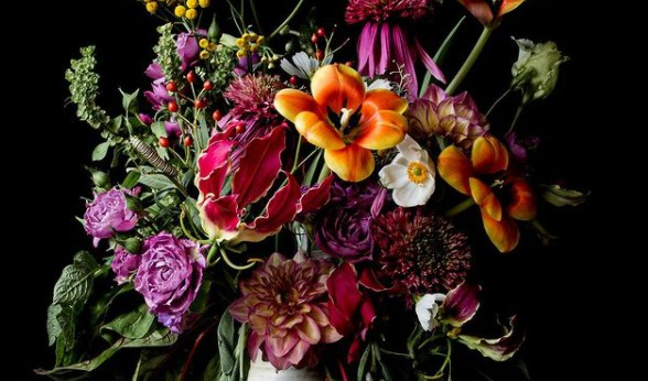 The 11 Best Fine Art Photographers in Brisbane | Peerspace