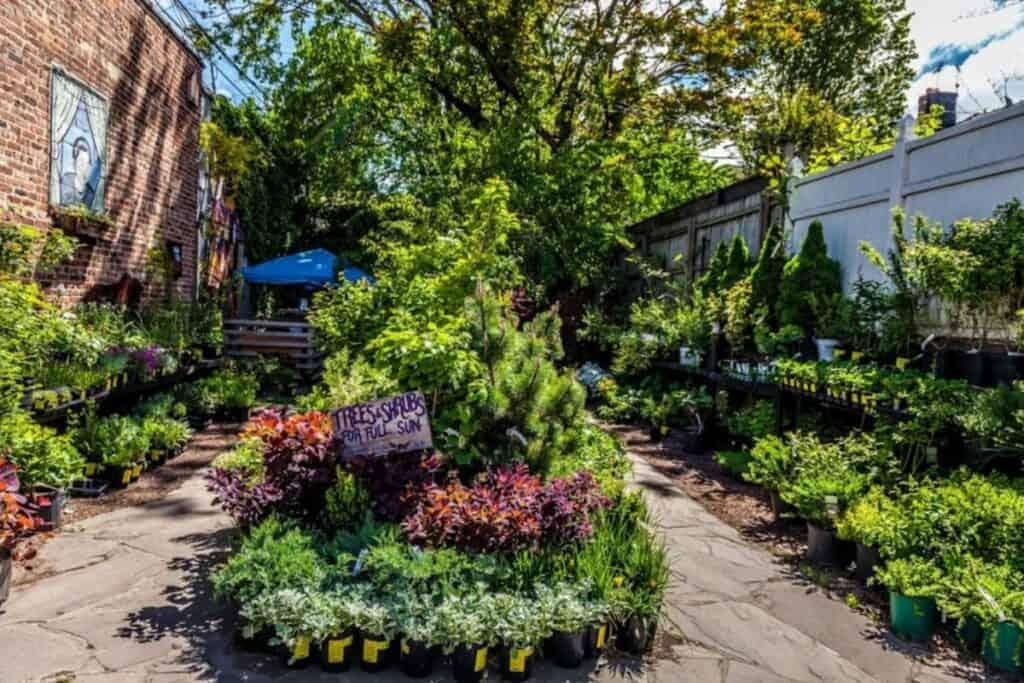 garden flex space in brooklyn