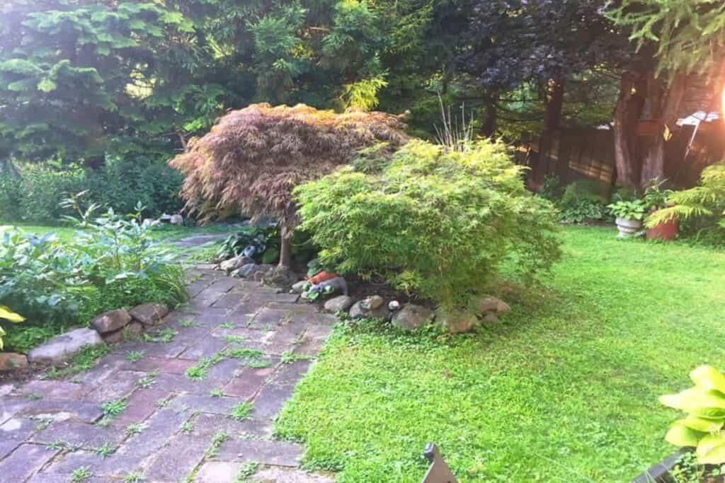 mature gardens in warwick