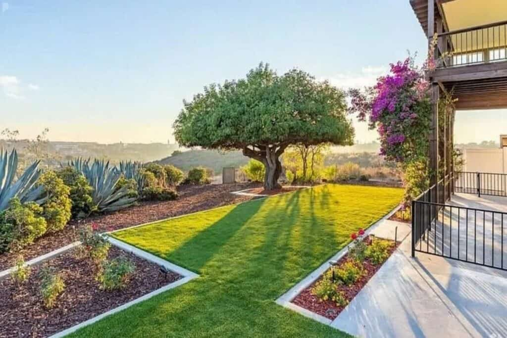 gorgeous backyard with plants and canyon