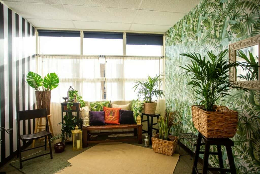 daylight studio in seattle with a jungle theme