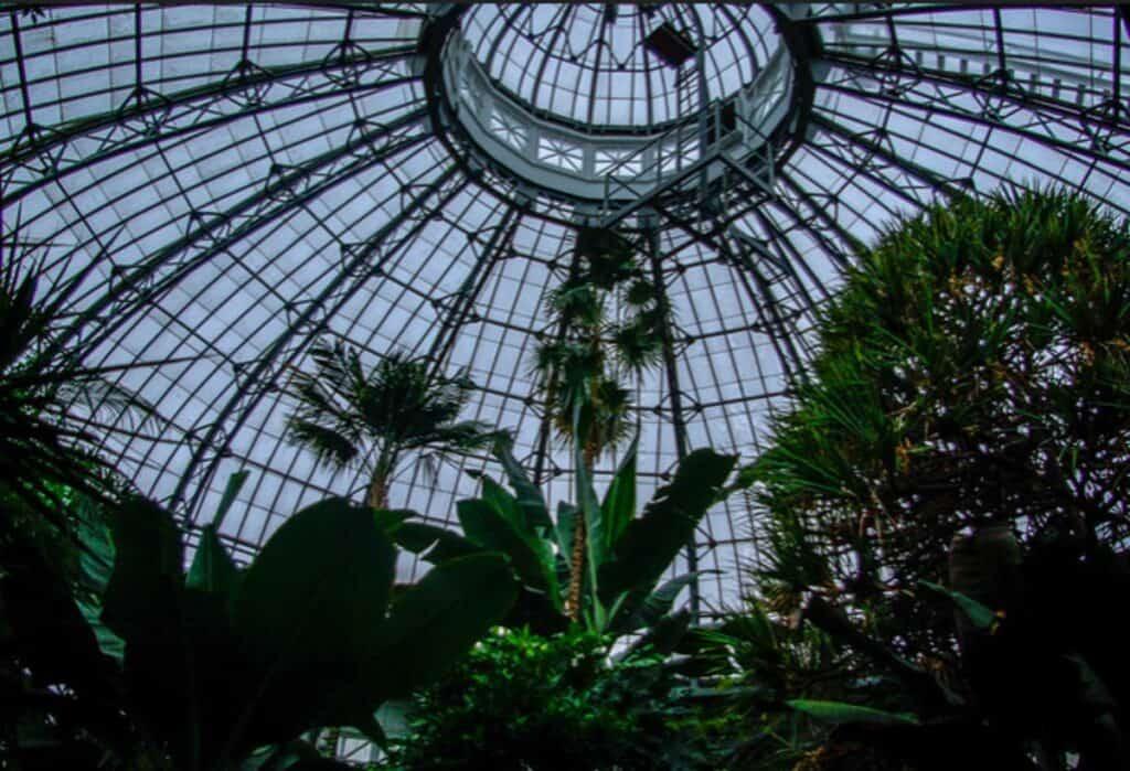 allan gardens conservatory in toronto