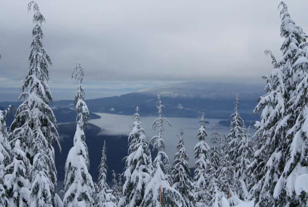 snow-capped mountains and trees in howe sound vancouver